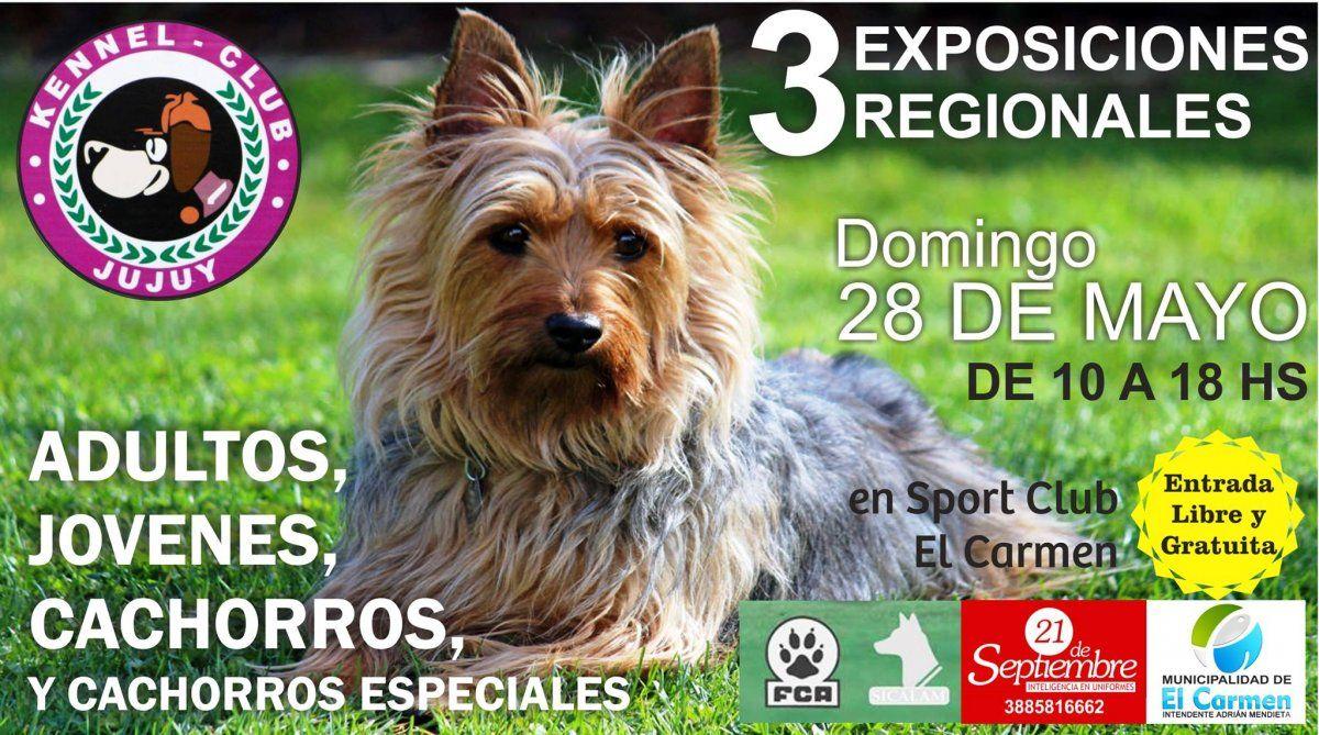 """Los caninos se lucirán en la """"Expo Regional"""""""