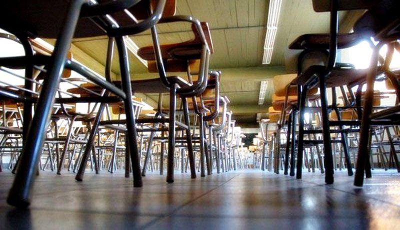Docentes universitarios se suman al paro