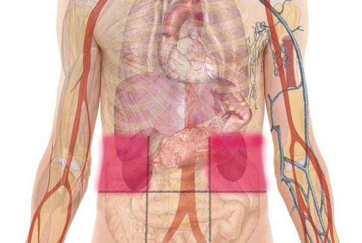molestia lado izquierdo del estomago