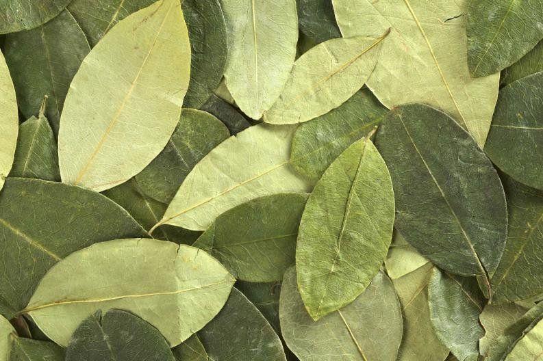 Trasladaban 60 kg de hojas de coca a pie en bolsas de arpillera