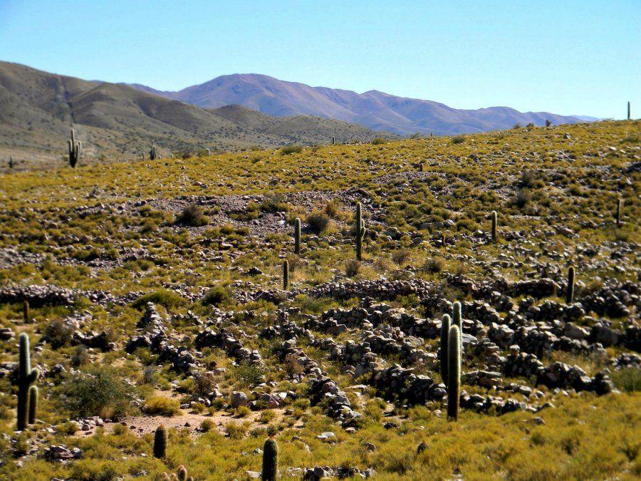 Coctaca, tierra de cultivo