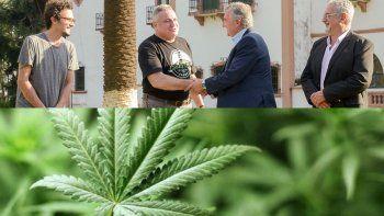 Jujuy comenzará a producir cannabis en 2020