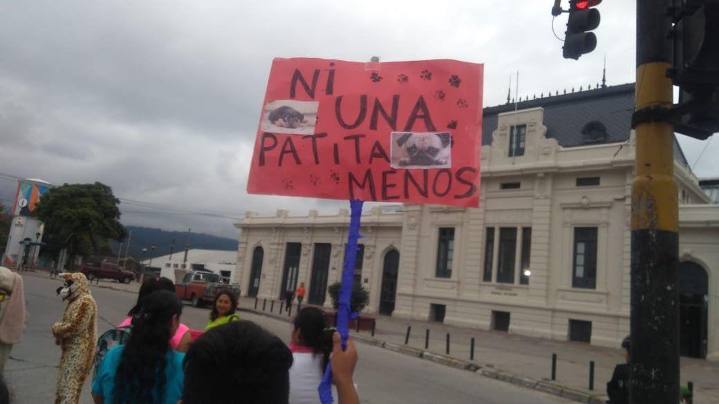 Jujuy se sumó a la marcha nacional contra el maltrato animal