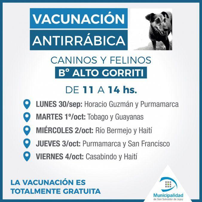 Castración y vacunación gratuita en barrios capitalinos