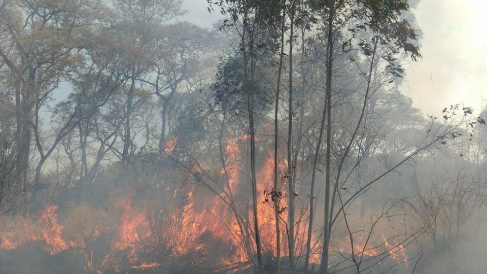 Hubo 30 incendios forestales en 4 días