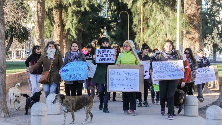 Jujuy se suma a la marcha nacional contra el maltrato animal