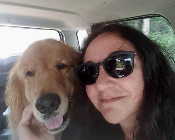 """Apareció """"Oso"""", el perrito que necesitaba tomar su medicación"""