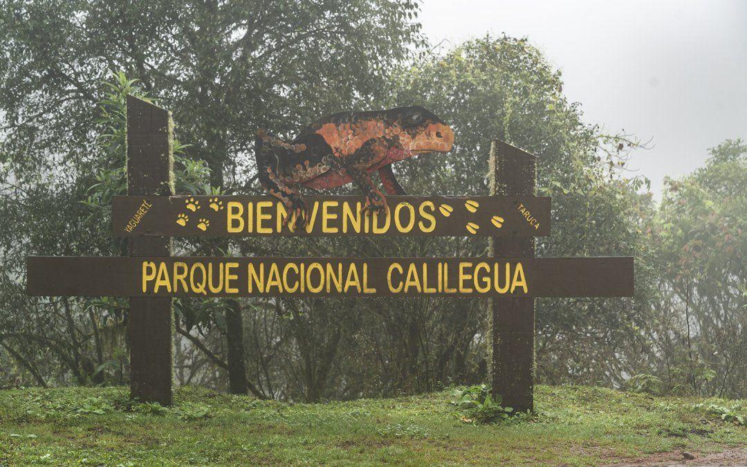 Día de los Parques Nacionales: ¿Sabés cuántos tiene Jujuy?