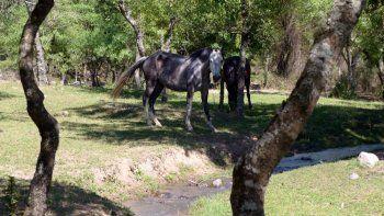 Guerrero, naturaleza agua y tradición