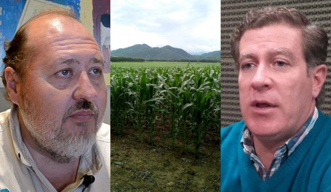 Agroindustria jujeña a la deriva tras la suba de retenciones