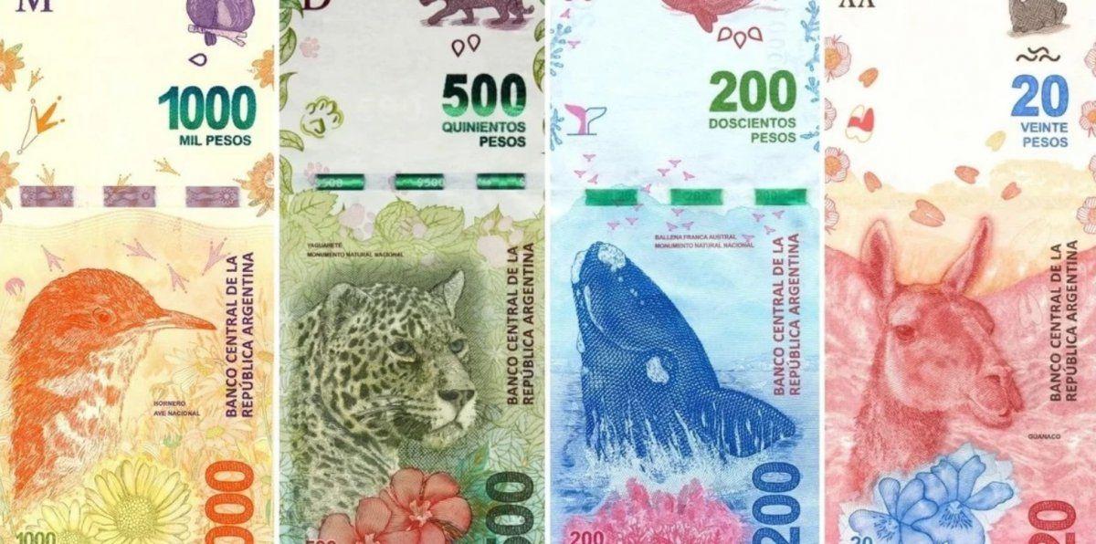 El Banco Central lanzará un billete de $2.000 o $5.000 y planea sacar los animales