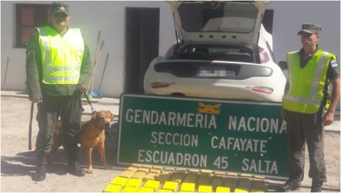 Viajaba desde Monterrico con más de 48 kg de droga y lo detuvieron en Salta
