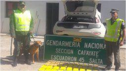 altText(Viajaba desde Monterrico con más de 48 kg de droga y lo detuvieron en Salta)}