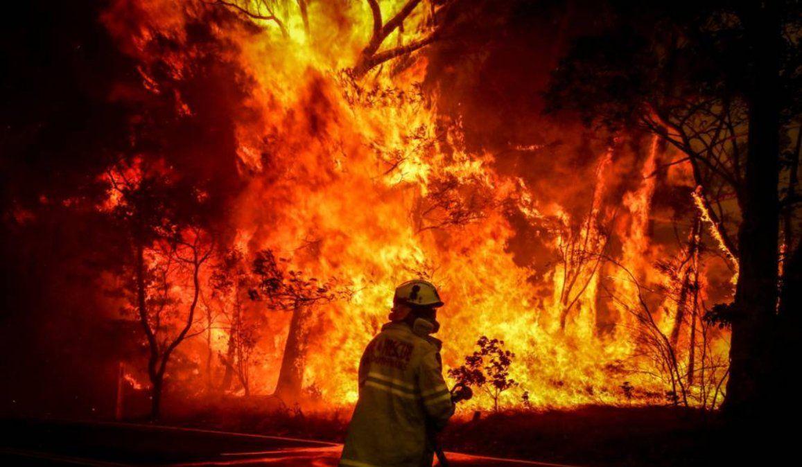 Los números que hablan de la devastación de los incendios en Australia