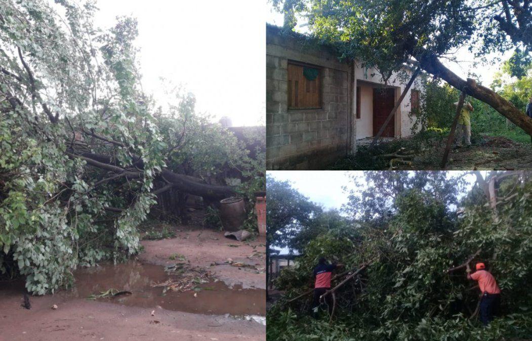 4 personas heridas y viviendas dañadas, el saldo del temporal en Caimancito