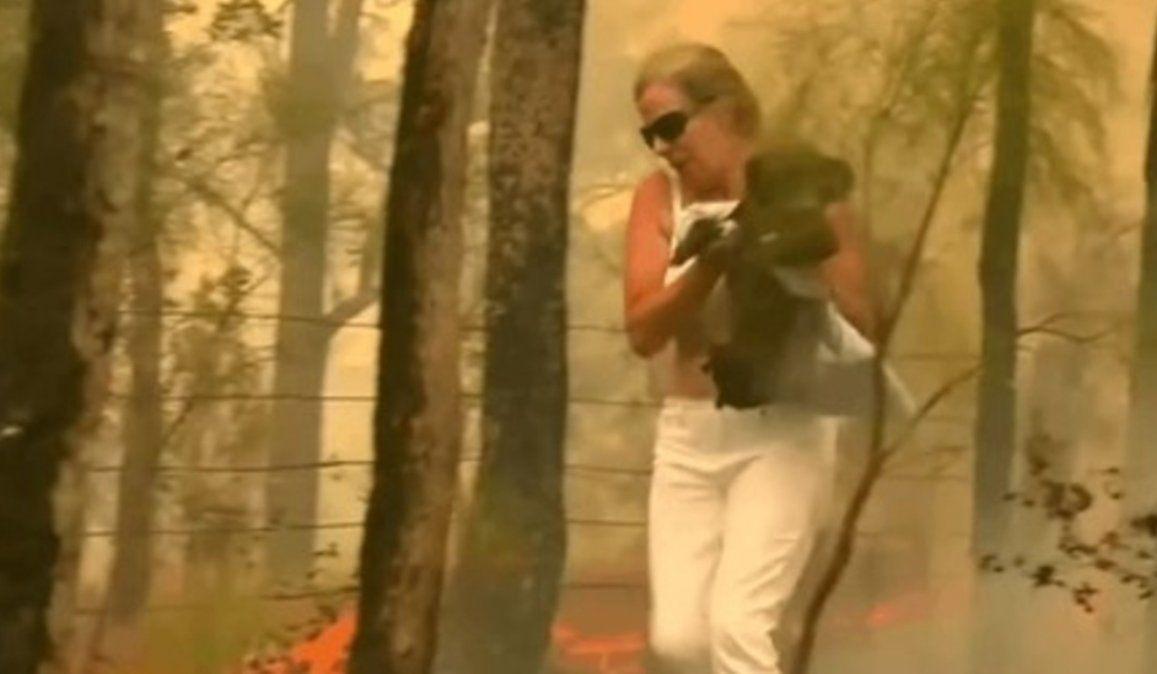 Heroína rescata a un koala de entre las llamas