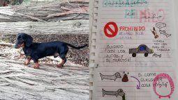 una nina le dio un manual de instrucciones a su tia para cuidar a su perrito y se volvio viral