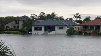 Tras el fuego y las inundaciones, apareció un tiburón en Australia