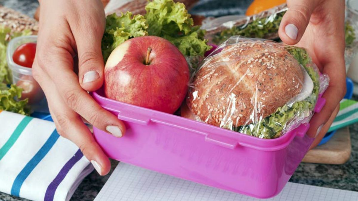 Vianda de la colonia de vacaciones ¿Cómo trasladar los alimentos?