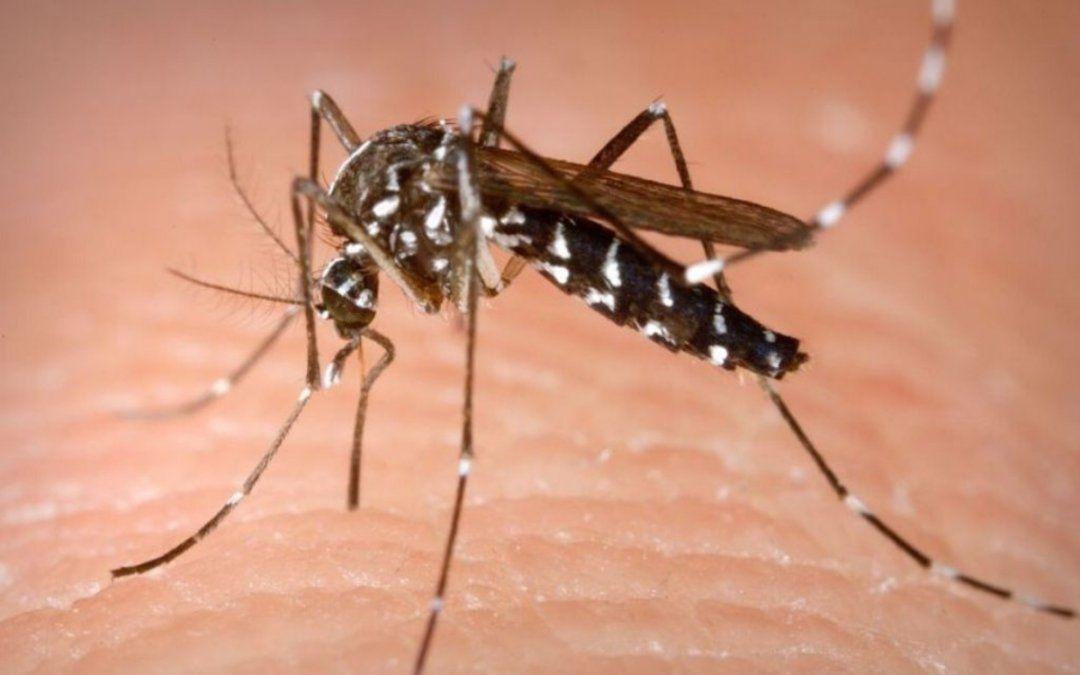 Ya son tres los casos de dengue importado