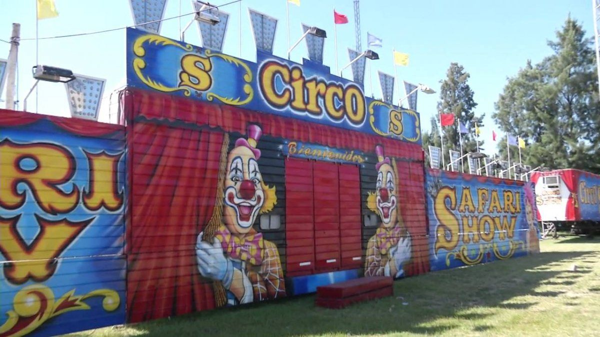Integrantes del Circo Safari necesitan la ayuda de todos