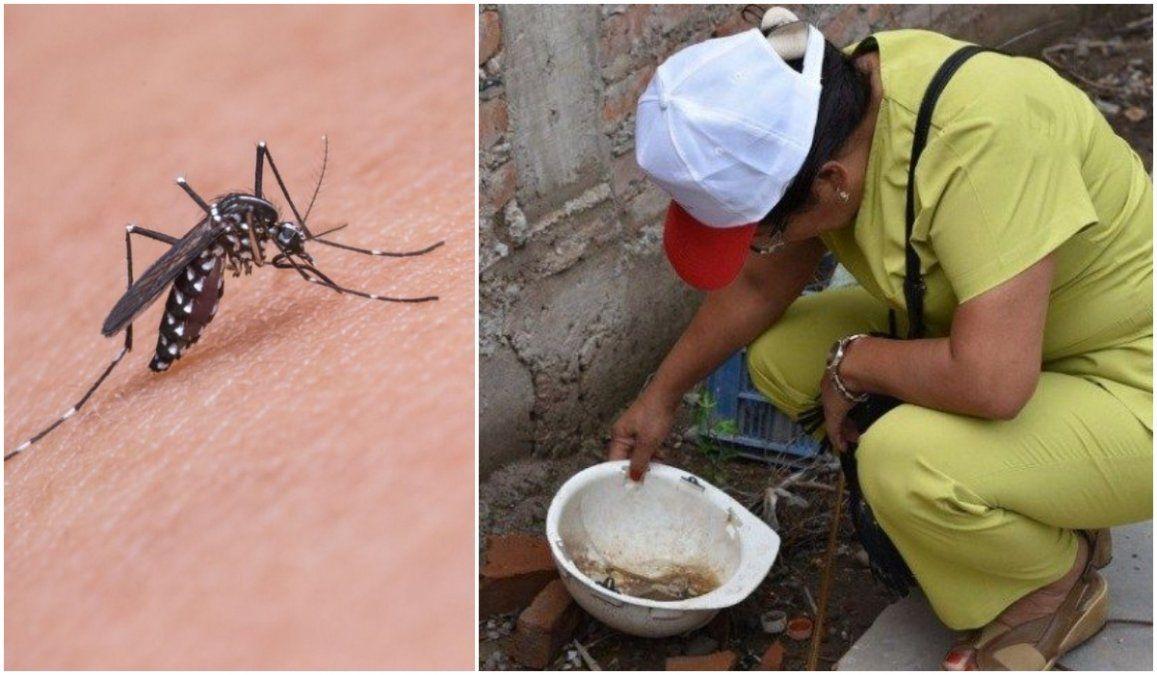 El brote de dengue en Jujuy supera los 3.900 casos