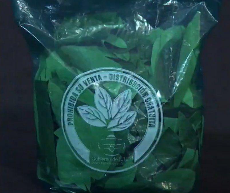 Distribución de hojas de coca incautadas: ¿Cómo se puede acceder al beneficio?