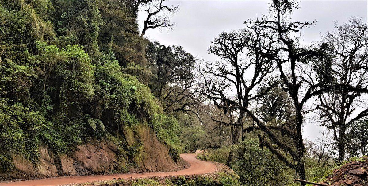 Foto: www.leerdelviaje.com