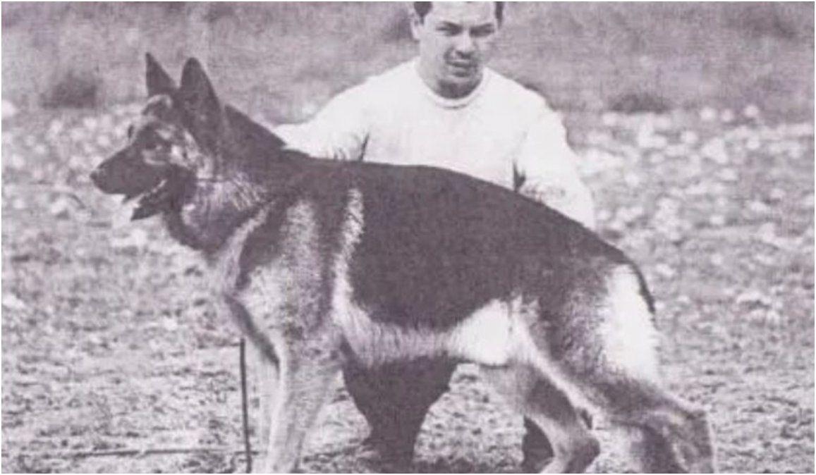 Día Nacional del Perro: la historia de Chonino, el heroico ovejero que inspiró la fecha