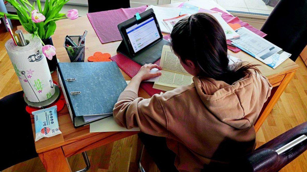 Educación en cuarentena: el 95% de los hogares recibió tareas desde la escuela