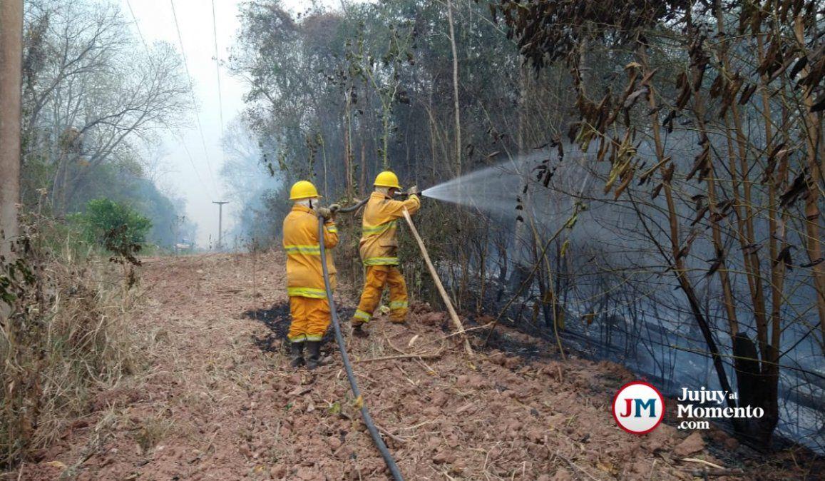 Destrato a los bomberos voluntarios: Sólo nos dan para comer un sándwich
