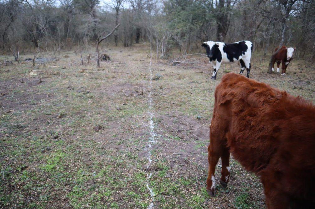 Campesinos: Desde el gobierno nos están amenazando para usurpar nuestras tierras