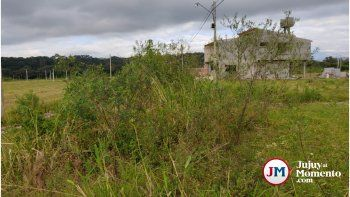 Palpalá: Vivir entre la maleza y el abandono
