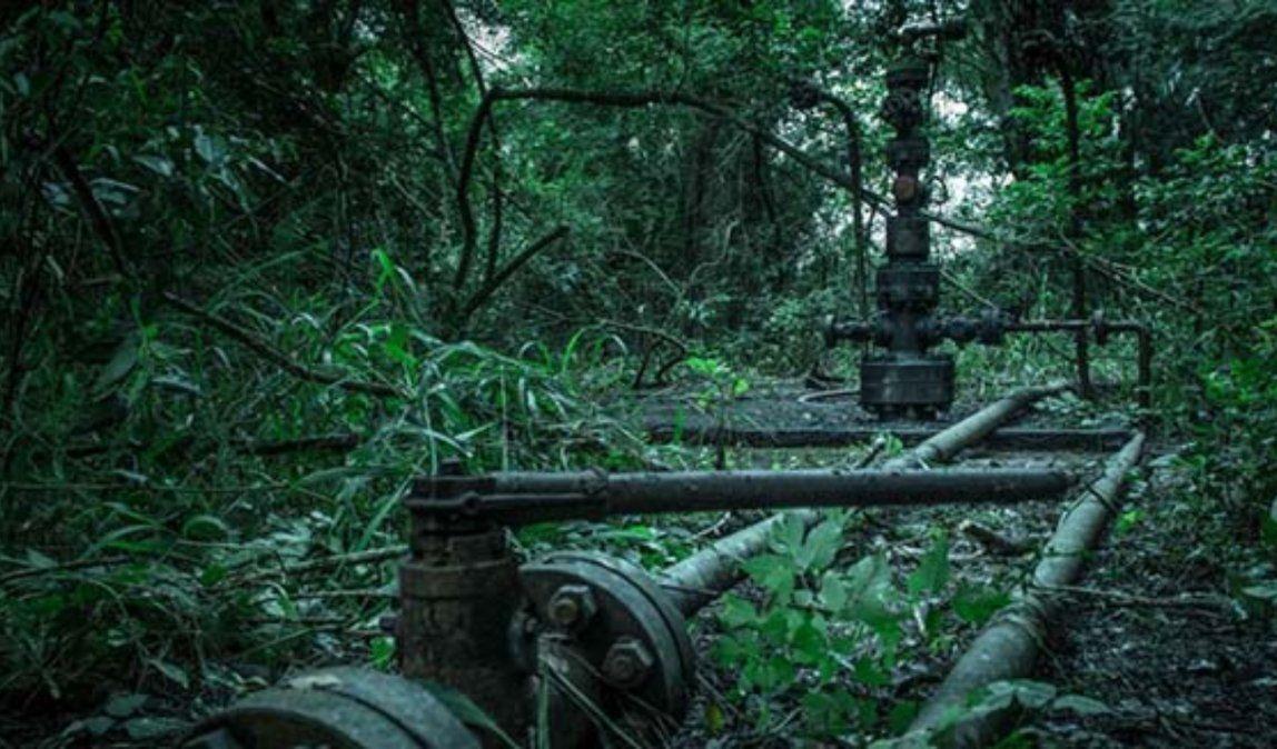 Parque Nacional Calilegua: Donado, creado, explotado y ¿protegido?