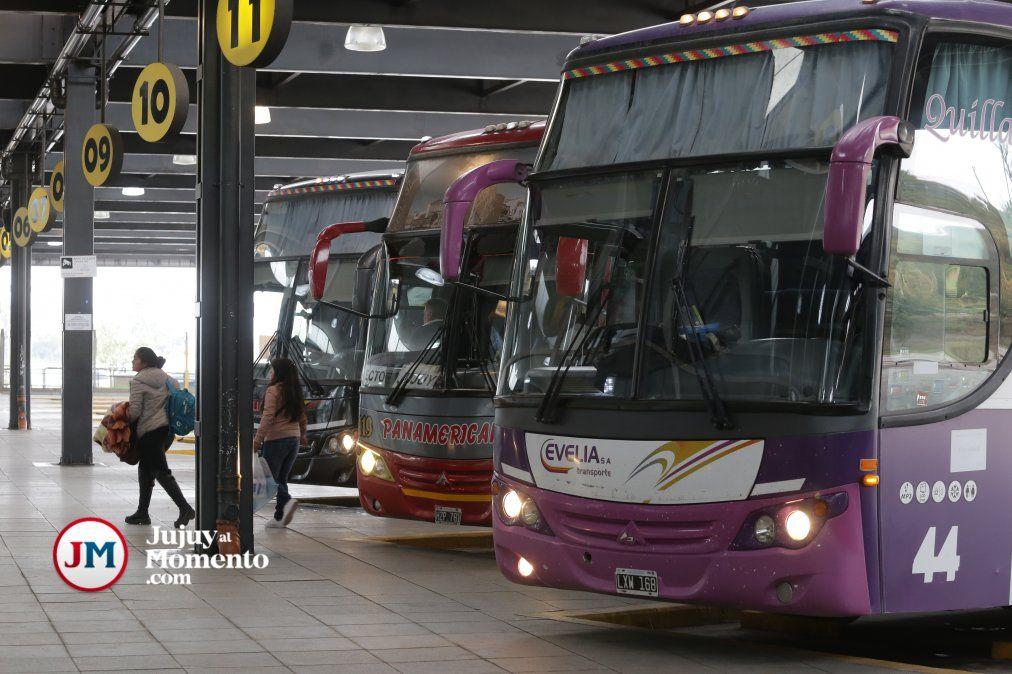 Transporte en crisis: Colectivos de larga distancia funcionan solo al 40%