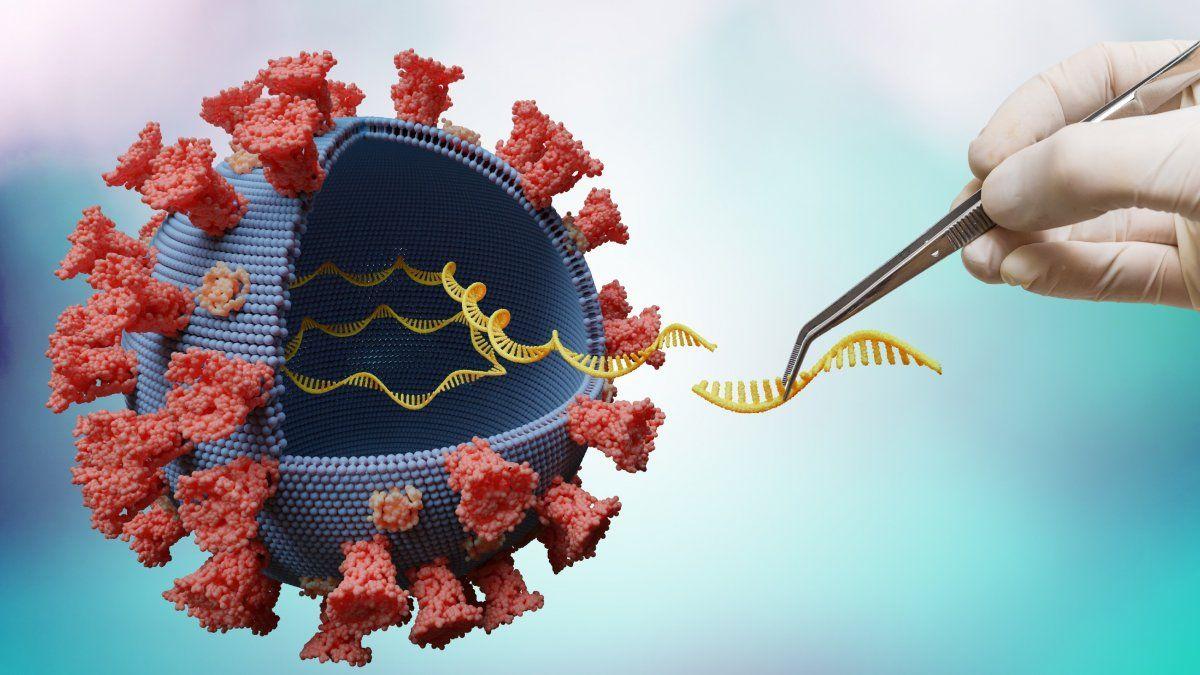 Secuenciación genética: Una herramienta indispensable para rastrear a los virus