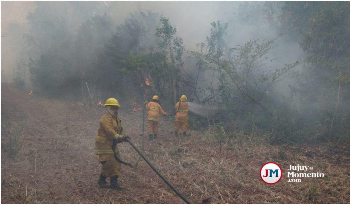 Incendios forestales: Las dificultades del personal para combatir el fuego