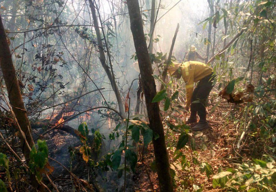 Incendios forestales: se quemaron más de 2.000 hectáreas del Parque Nacional Calilegua
