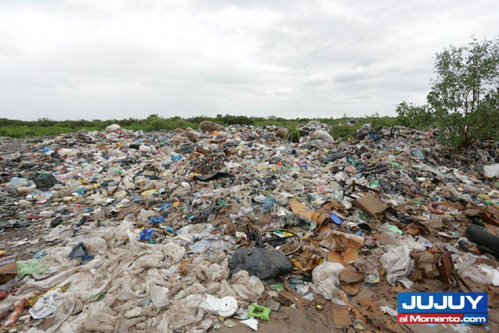 Basura y contaminación: un problema crónico en Jujuy
