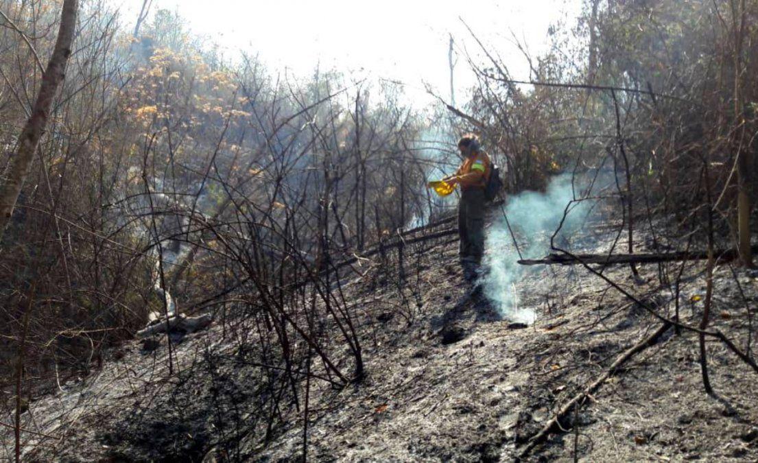 Ya se quemaron más de 5.000 hectáreas del Parque Nacional Calilegua