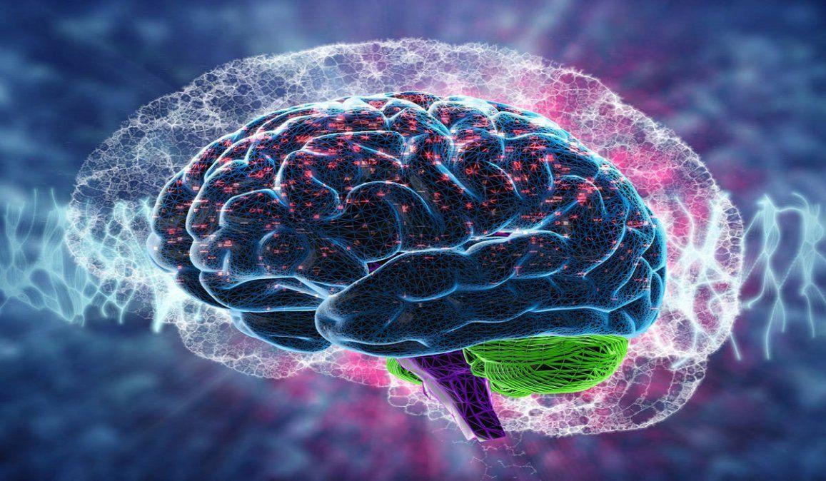 Día mundial del cerebro: es el director de orquesta en el cuerpo