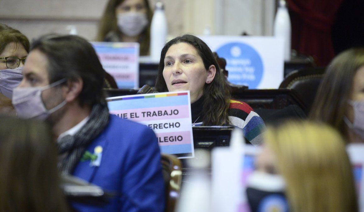 Media sanción para el proyecto de ley sobre cupo laboral travesti trans