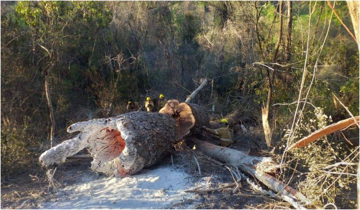 La lluvia no pudo extinguir totalmente los incendios forestales