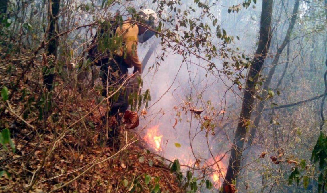 A un mes del inicio, los incendios forestales ya afectaron más de 9.000 hectáreas
