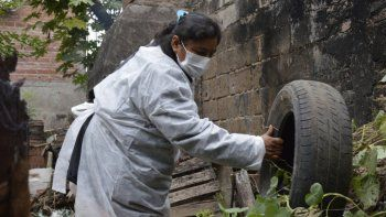 Se registraron 3 casos nuevos de dengue en Jujuy
