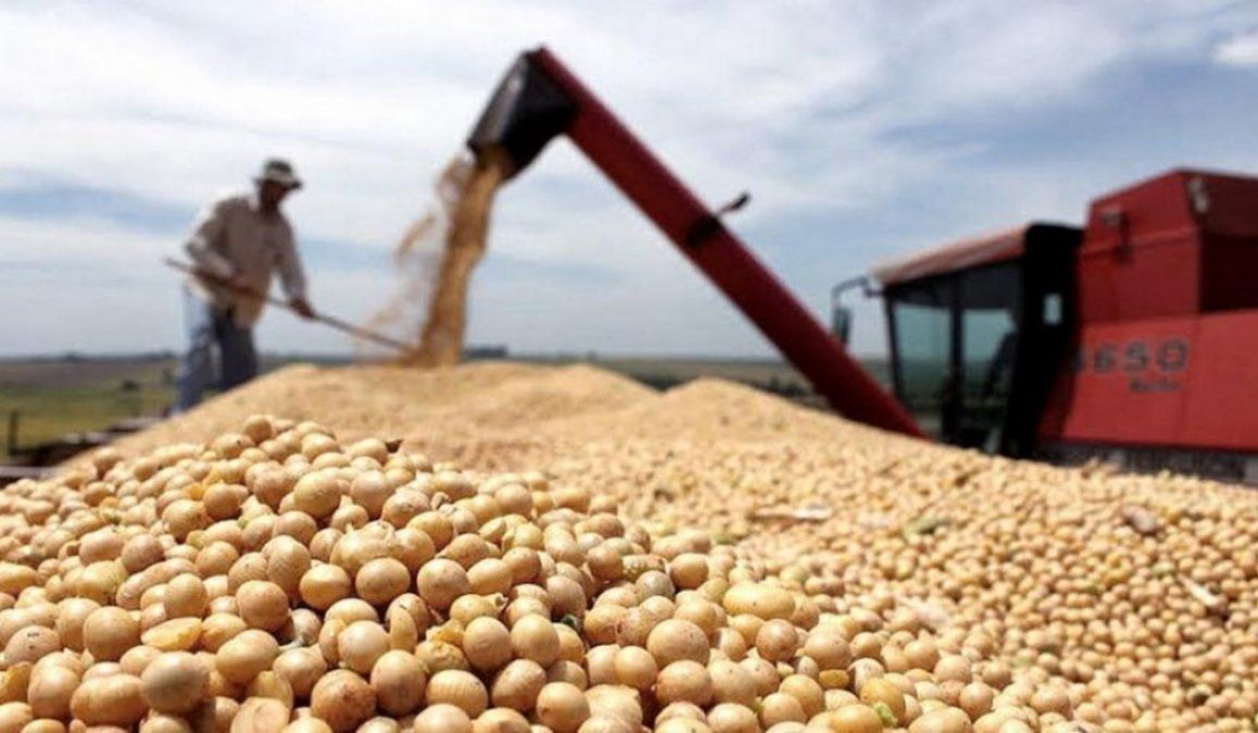 La soja lideró exportaciones en 2020 con más de US$14 mil millones