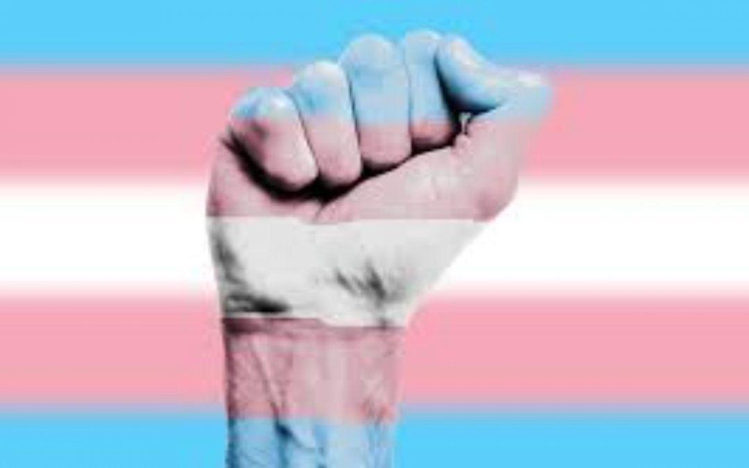 Inclusión en las elecciones legislativas de la provincia: seis chicas trans entre las candidatas